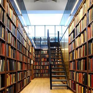 Библиотеки Дальнего Константиново