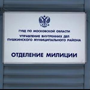 Отделения полиции Дальнего Константиново